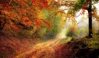 5 Non-Horror Reasons Autumn is the Best of All Seasons